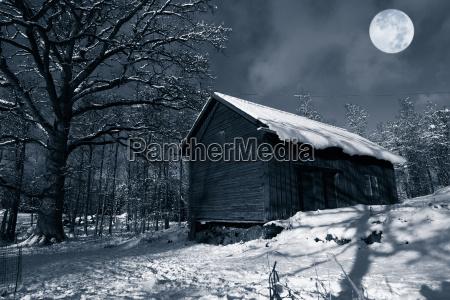 winterlandschaft mit kaelte vollmond