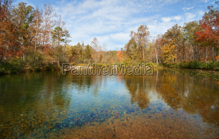 autumn, leaves, and, trees, on, river - 4871118