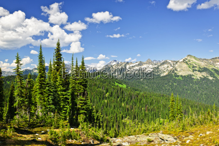 rocky mountain view von mount revelstoke