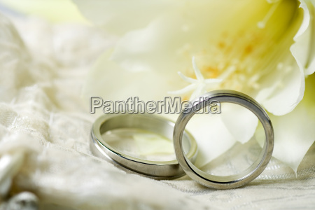 wedding rings on a yellow background