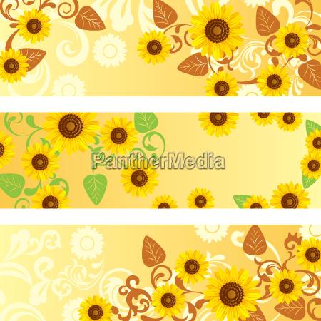 sonnenblumen banner gesetzt