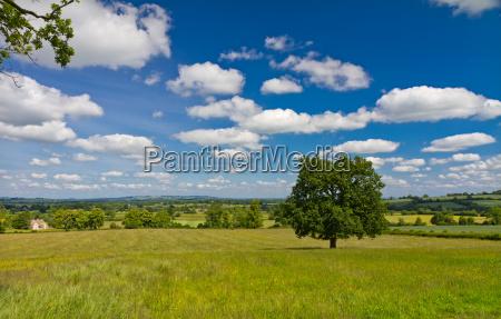 horizont england landschaftsbild landschaft natur anhoehen