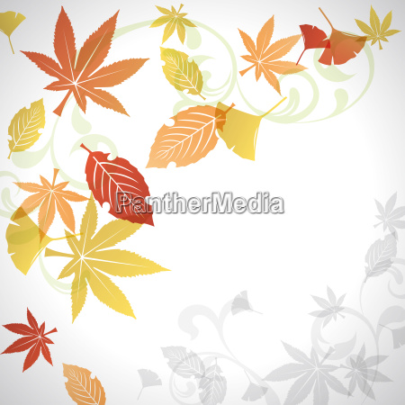 blatt baumblatt verzierung ornament element vorlage