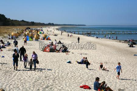beach seaside the beach seashore salt