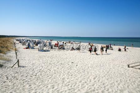 sandy beach on darss zingst