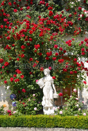 red roses with woman statue