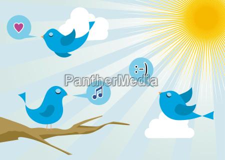 twitter birds at social media sunrise