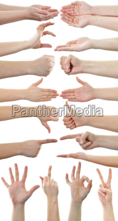 set of many different hands over