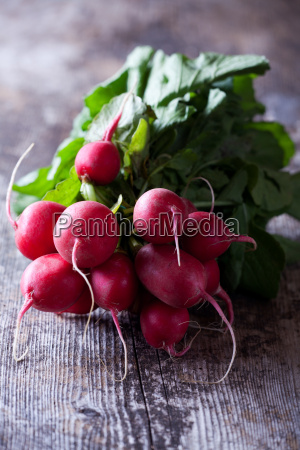 close up of red radishes on
