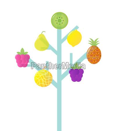 abstract stylized retro fruit tree isolated
