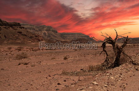 beautiful sunset in arava desert israel