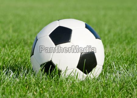 soccer ball in the grass field