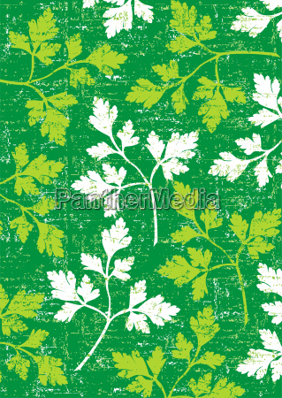 parsley background on green