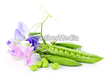 pods of peas and sweet pea