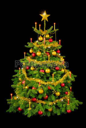 glorious christmas tree on black