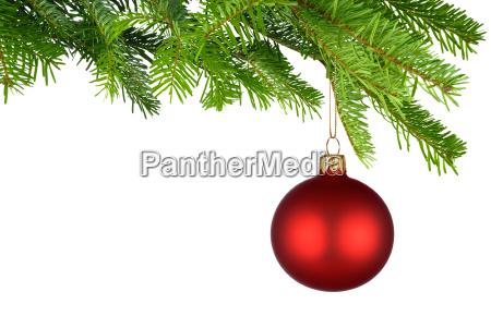 rot leuchtende christbaumkugel haengt am frischen