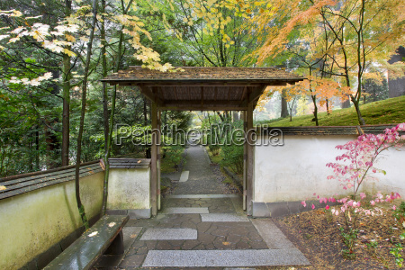 gate and pathway in japanese garden