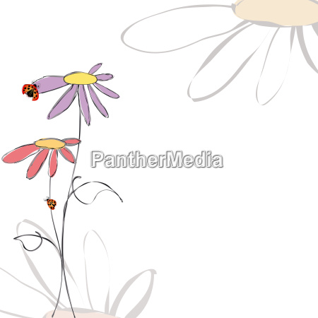 abstract colorful floral butterfly background
