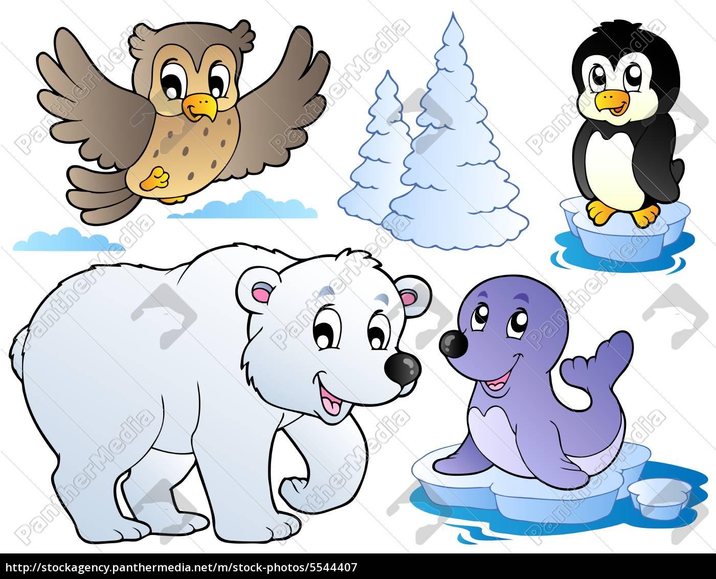 verschiedene, glückliche, wintertiere - 5544407