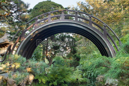 curved wooden bridge at japanese garden