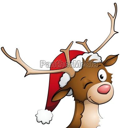 rentier mit weihnachtsmuetze auf