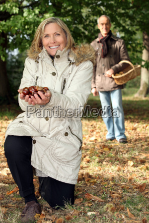 middle aged couple picking chestnut