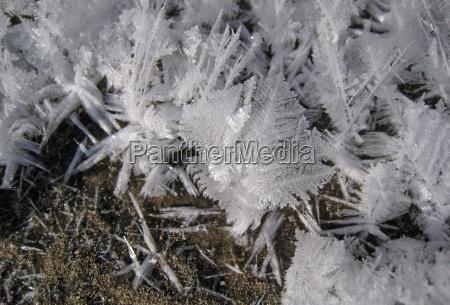 winter ice frost frozen gaffer snow
