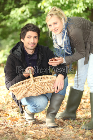 couple collecting chestnuts