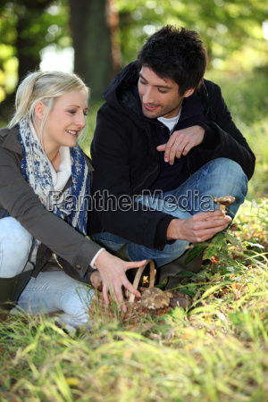 couple gathering mushrooms in park