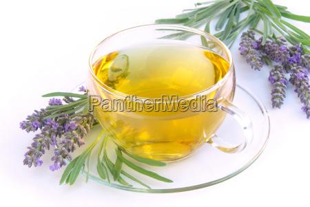 tee lavendel lavender tea 06
