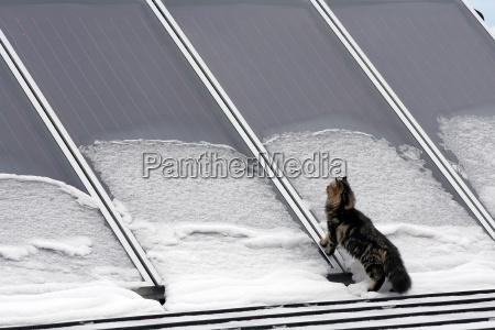 funktioniert die solaranlage auch im winter