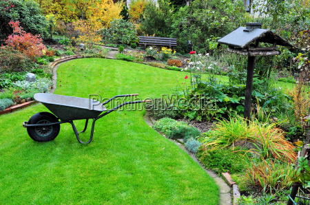 gardening with wheelbarrow in autumn garden