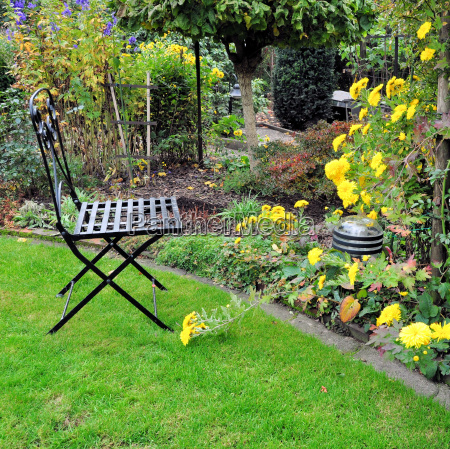 garden chair and yellow asters