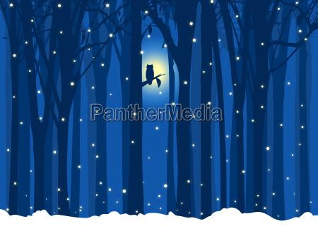 winter illustration tree with owl