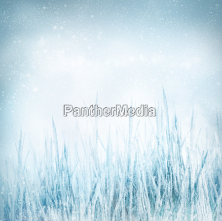 winter nature background with frozen