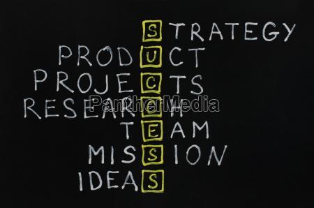 strategie erfolgreich freisteller model entwurf konzept