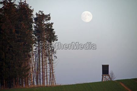 landscape with high seat and moon