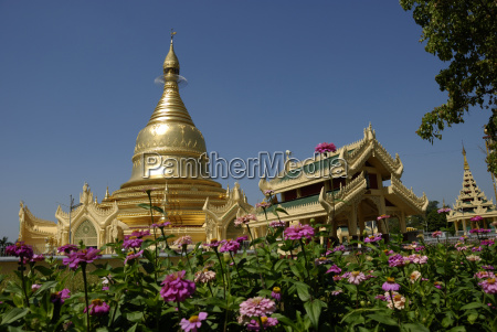 maha wizaya pagode in yangon