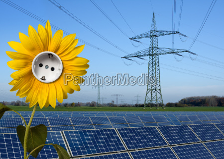 solarpark sonnenblume mit steckdose und stromtrasse