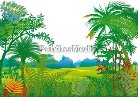 dschungel mit palmen