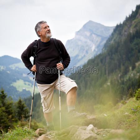 stattlicher aelterer wandern in den bergen