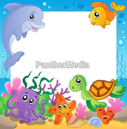 feld, mit, unterwassertieren, 1 - 6493473