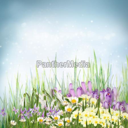 spring floral background with spring symbol