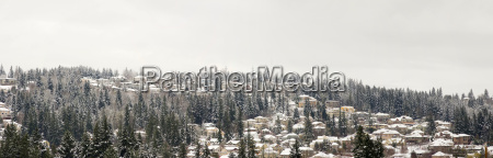 houses on the mountain in winter