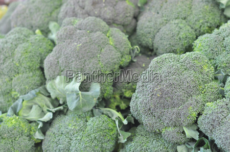 broccoli gemuese