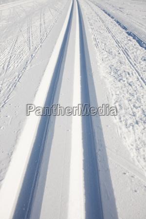 langlaufski spuren im winter