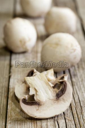 frische pilze