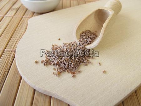 indischer flohsamen plantaginis ovatae semen