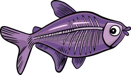 cartoon x ray fish