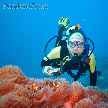 clownfishes and photographer